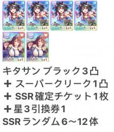キタサンブラック3凸 +スーパー1凸+SSRランダム6~12体+ SSR確定チケット1枚 即時対応