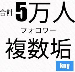 【複数垢・可】Instagram5万フォロワー/最大20垢まで可能・kny
