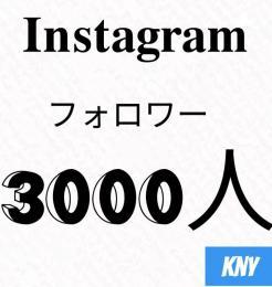 Instagramフォロワー3000人/30日減少保証【100いいね無料】kny