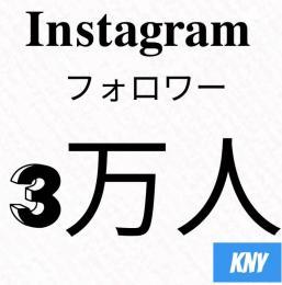 Instagramフォロワー3万人/30日減少保証【100いいね無料】kny